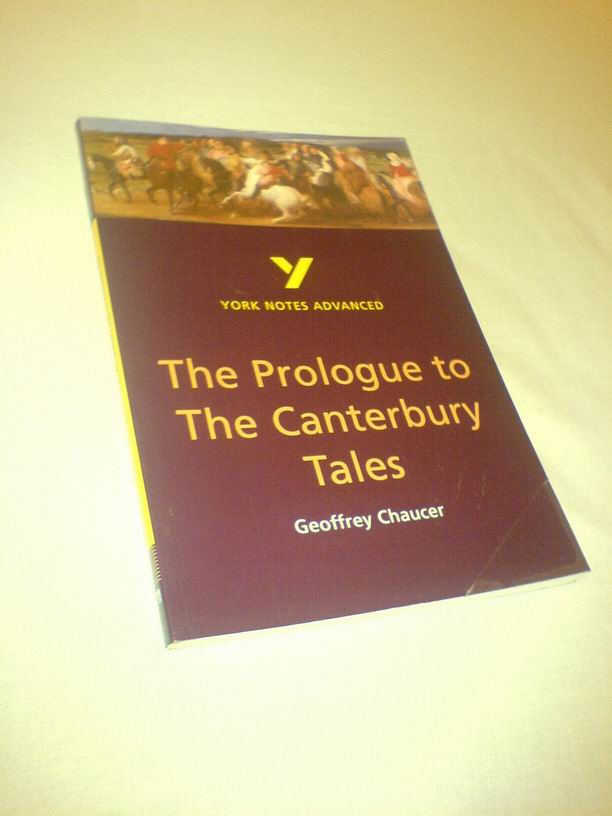 essay on canterbury tales prologue